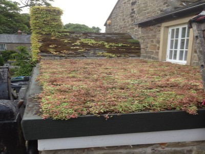 Completed Green Roof with Sedum planting